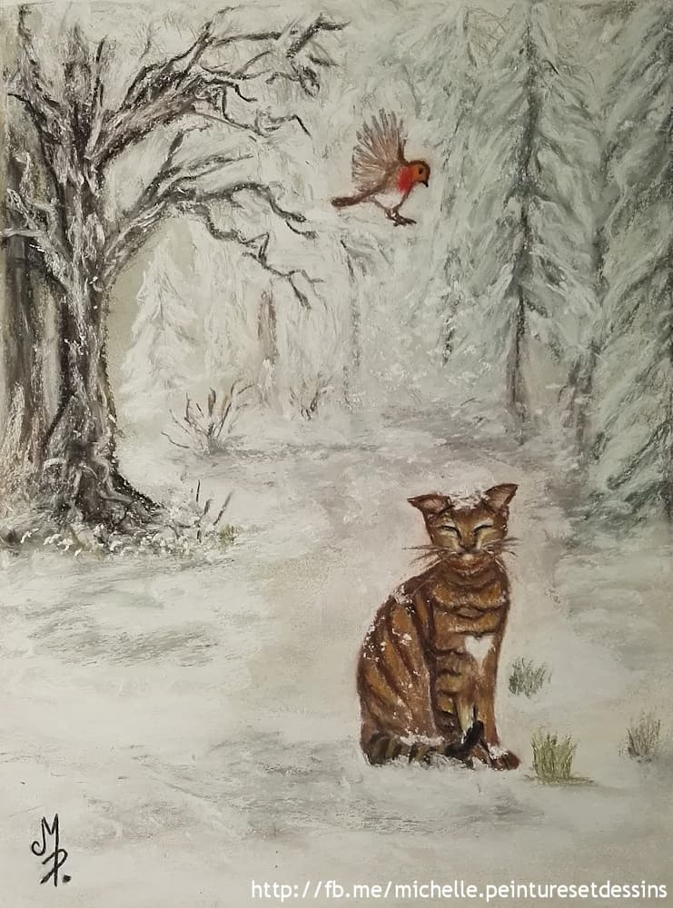 Chat Abyssin sous la Neige