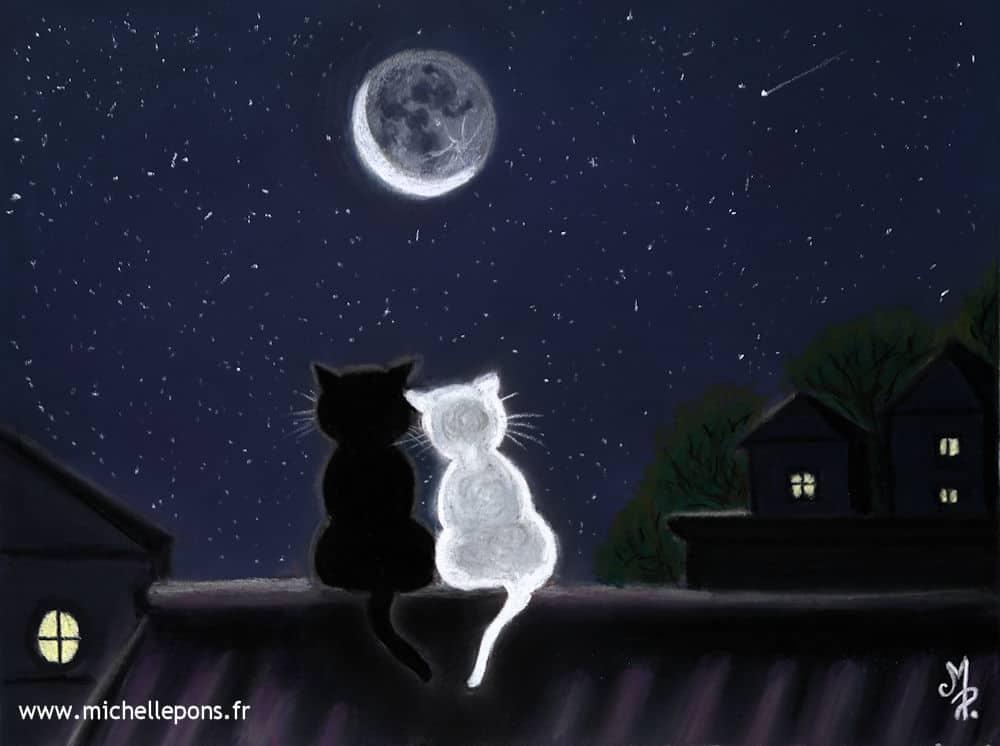 Les Chats au Clair de Lune